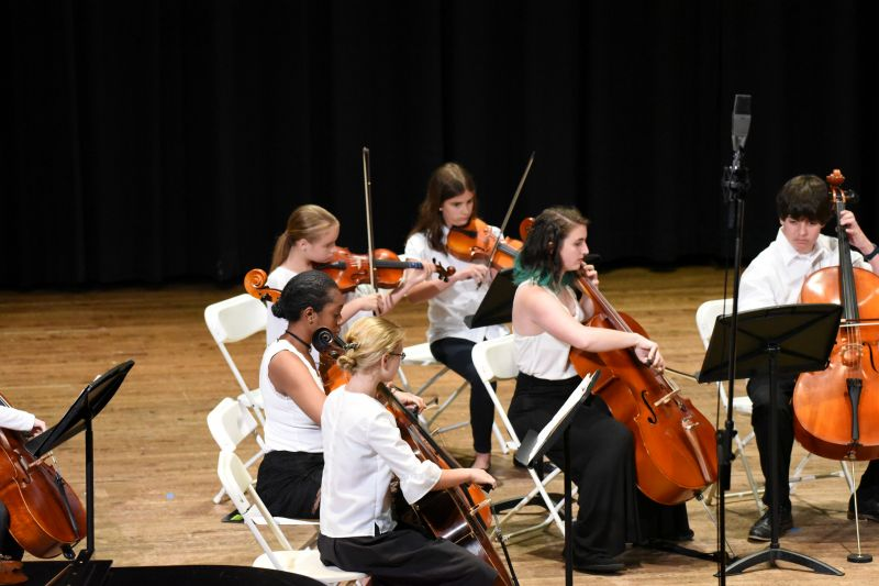 Viola, Cello, Bass ensemble concert